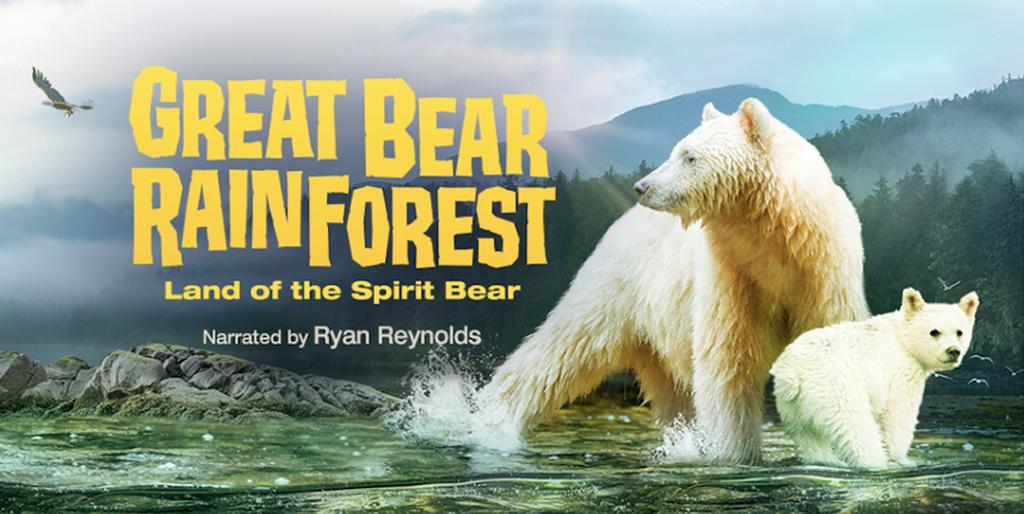 great bear rainforest movie poster